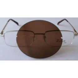 Polarised Brown Option